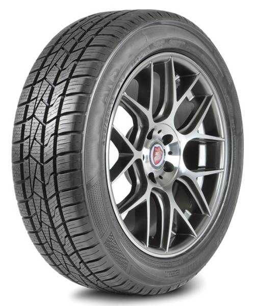 Delinte AW5 All Weather Passenger Car Radial Tire